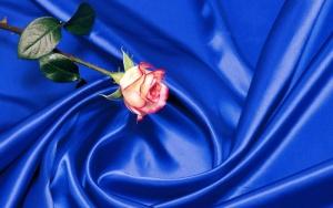 Цвет постельного белья из шелка