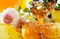 Как определить качество меда с научной точки зрения?