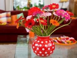 Сохраним цветы свежими