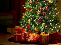 Почему на Новый год принято наряжать елку