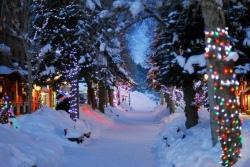 Провести зимние каникулы с пользой