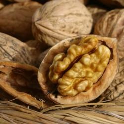 Есть орехи каждый день