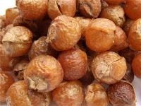 Что такое орешки мукоросси