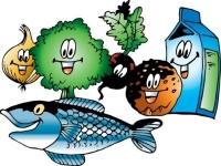 Правила здорового питания и пищеварения