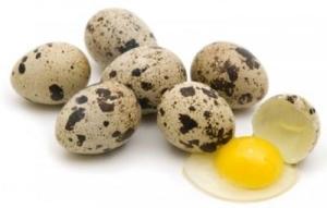 Перепелиные яйца – польза
