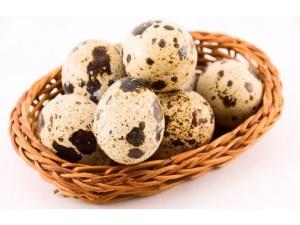 Польза перепелиных яиц для детей