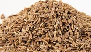 Укроп - семена