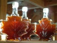 Кленовый сироп ‒ польза и вред