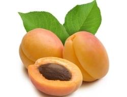 Витамин В17 в абрикосовых косточках