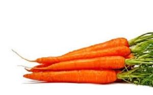 Морковь - каротины