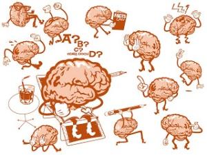 В какое время наша память лучше работает
