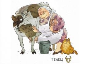Как стареют тельцы