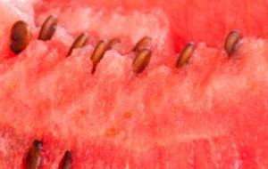 Чудо ягода