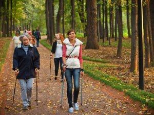 Польза скандинавской ходьбы