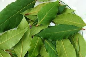 Лавровый лист от запаха чеснока
