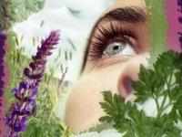 Лечение воспаления глаз народными средствами