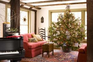 Как сохранить новогоднюю елку дольше