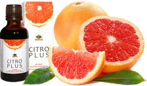 Лечебные свойства экстракта косточек грейпфрута