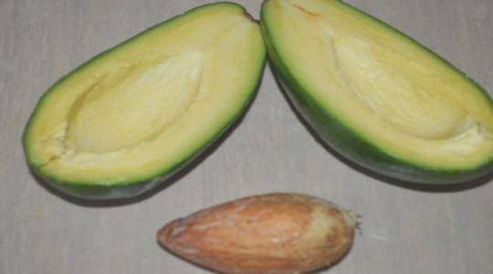 Авокадо с яйцом -2
