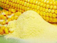 Кукурузный крахмал польза и вред