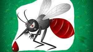 Ужасный комар