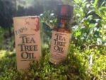 Масло чайного дерева – свойства и применение