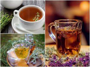 Чай с чабрецом - польза