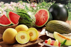 Польза арбуза и дыни